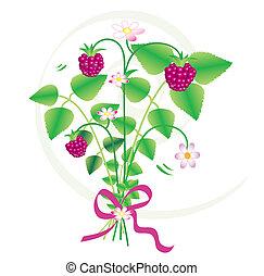 Floral Strawberries, vector - Bouquet of wild strawberries,...