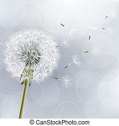 Floral trendy background with flower dandelion. Beautiful...
