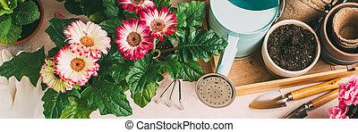 floral, tuinieren, achtergrond, met, kleurrijke, flowers.