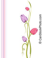 floral, tulipán, plano de fondo