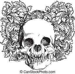 floral, vampier, illustratie, schedel