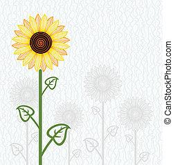 floral, vecteur, tournesol, fond