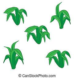 floral, vecteur, vert, dessin animé, illustration