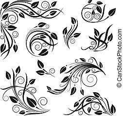 floral, vector, diseño determinado, elementos