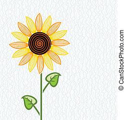 floral, vector, girasol, plano de fondo