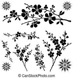 floral, vector, versieringen