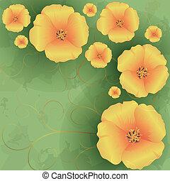 floral, vendange, fleurs, fond, coquelicots