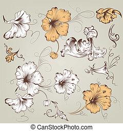 floral, vendange, vecteur, collection