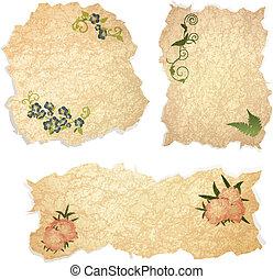 floral, vendimia, papel