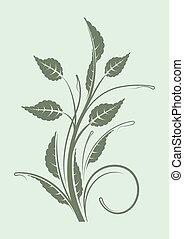 floral, verde mint, ramo, fundo