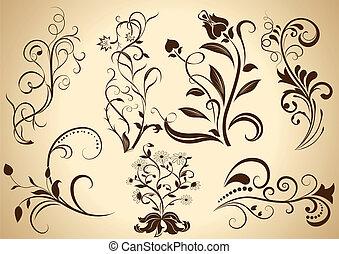 Floral vintage vector design elements