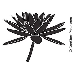 Floral Water Lily. Vector line style