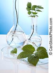 floral, wetenschap, blauwe , laboratorium