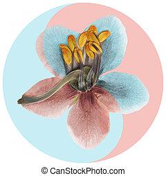 Floral Yin Yang symbol.