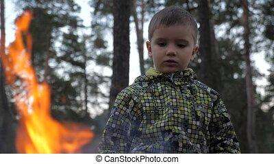 flore, danger, brûler, nature., nature, enfants, dû, avoir, ...