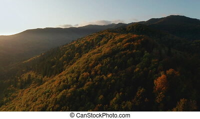flore, sunset., beau, montagne, au-dessus, voler, briller, ...