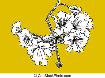 floreale, albero, elemento