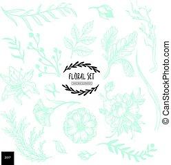 floreale, disegnato, collezione, mano