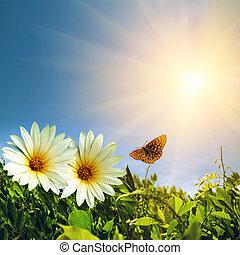 floreale, primavera