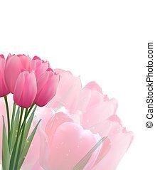 floreale, tulips, vettore, fondo, illustrazione