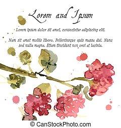 florecer, acuarela, geranio