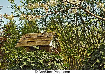 florecer, alimentador, casa, área, jardín, exterior, aves, ...