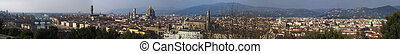 Florence panorama city skyline