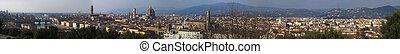 Florence panorama city skyline