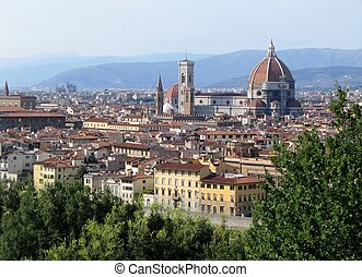 Florence, top view