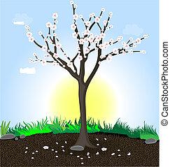 floresça árvore