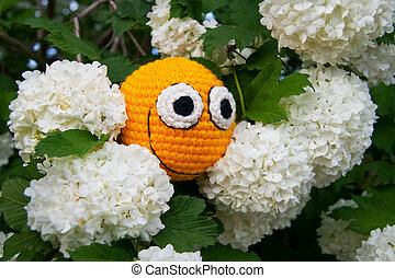 flores, amarela, smiley
