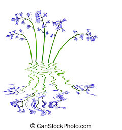 flores, bluebell