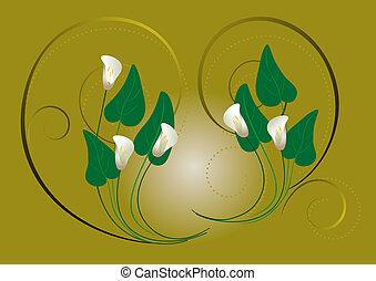flores, branca, callas, ligado, um, verde, bac