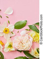 flores brancas, fundo, cobertura