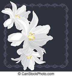 flores brancas, quadro