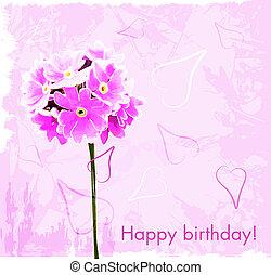 flores côr-de-rosa, cartão aniversário, feliz