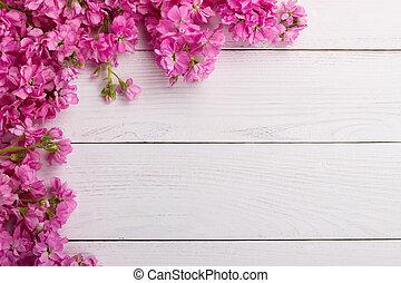 flores cr de rosa ligado madeira fundo