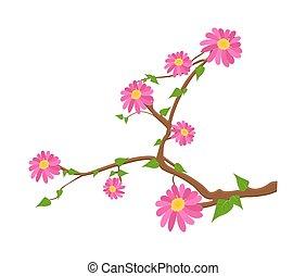 flores côr-de-rosa, ramo