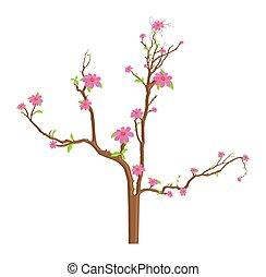 flores côr-de-rosa, ramos, ilustração