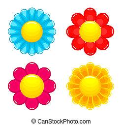 flores, cabezas