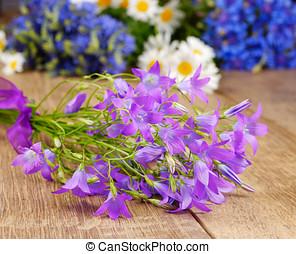 flores, campânula