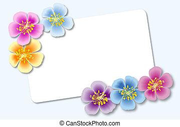 flores, cartão