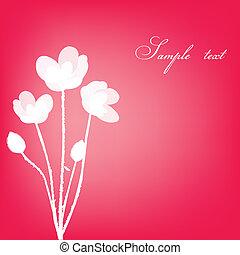 flores, cartão, saudação, cor-de-rosa, branca