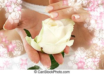 flores, cercado, rosebud