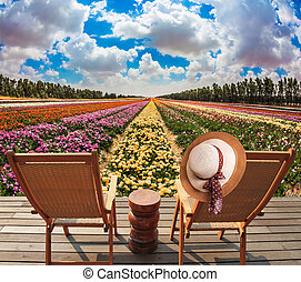 flores, chaise, lounges, prado