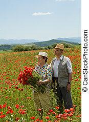 flores colheita, par, sênior, feliz