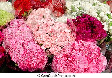 flores coloridas, en, el, mercado de flor, en, bangkok, tailandia