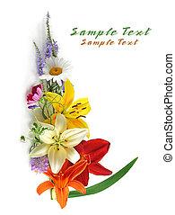 flores coloridas