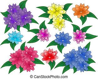 flores, conjunto, vector