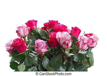 flores, cor-de-rosa, cima fim